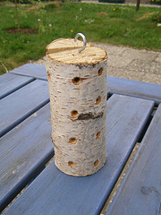Mason Bee House - Varieties of Bees