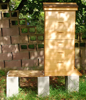 setting up a beehive Setting up a Beehive   Guidelines for Beginners